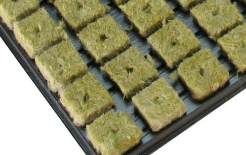 Grodan-Small-Cubes-2x2cm-tray